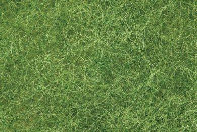 Light green fiber foliage