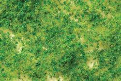 Scenescapes Foliage  Lt Grn Crd